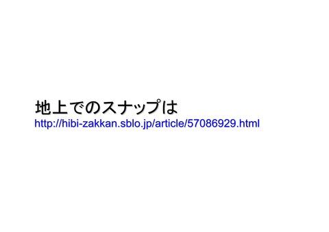 7月16日代々木公園大集会空撮の報告_07
