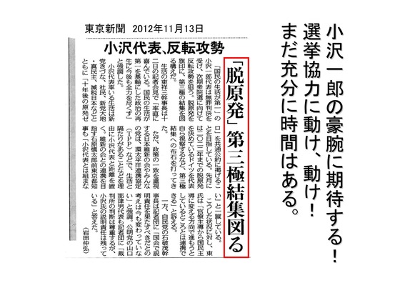 総選挙第5弾・諸政党編_28