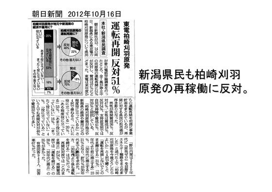 1月23日連続大集会の呼びかけ_15