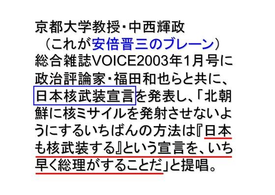 総選挙第2弾・自民党編_08