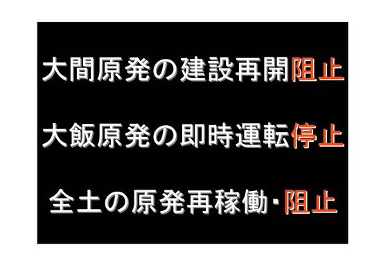 11月11日マンモスデモの呼びかけ_10