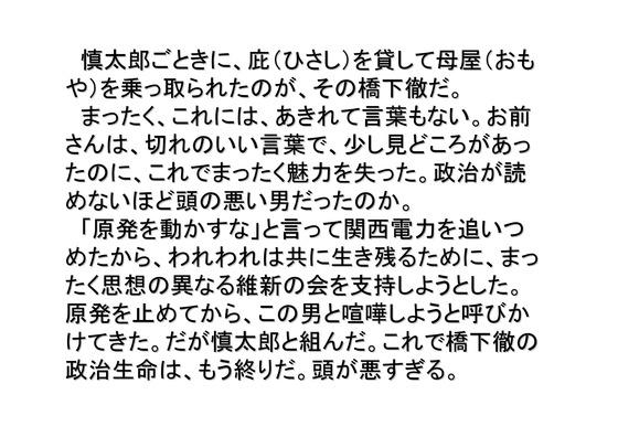 総選挙第4弾・維新の会編_07