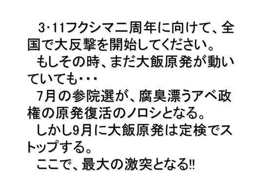 01月02日大集会の呼びかけ_16
