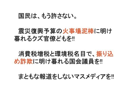 11月11日マンモスデモの呼びかけ_15