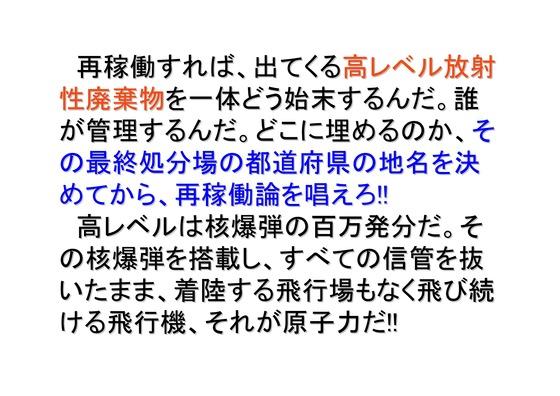 フクシマ2年の全国デモ (1)_46