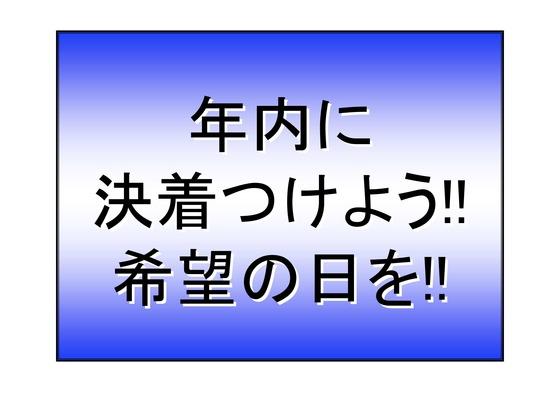 11月11日マンモスデモの呼びかけ_14