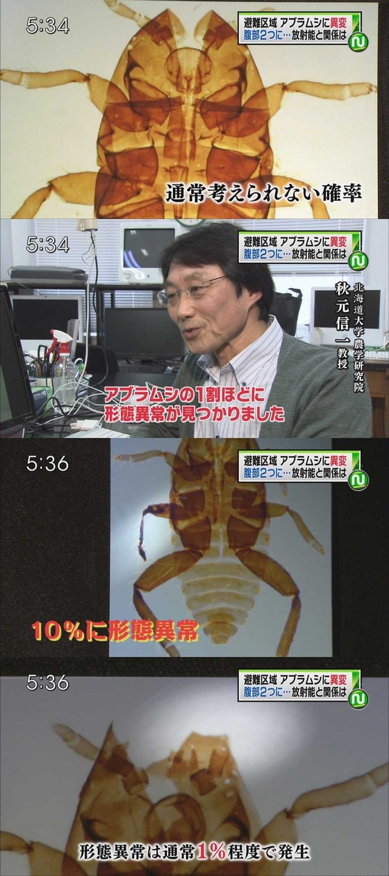 生物異変 浪江4