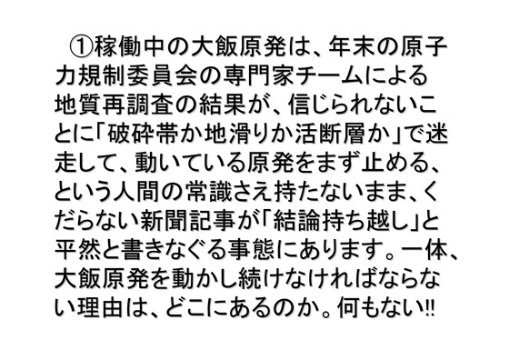01月02日大集会の呼びかけ_06