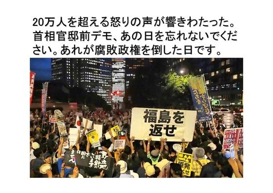 01月02日大集会の呼びかけ_13
