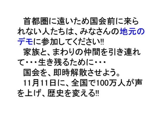 11月11日マンモスデモの呼びかけ-2_06
