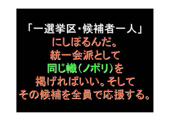 総選挙第5弾・諸政党編_24