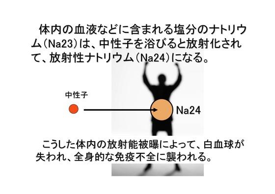 核兵器-4(核融合炉)_26