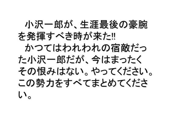 総選挙第5弾・諸政党編_04