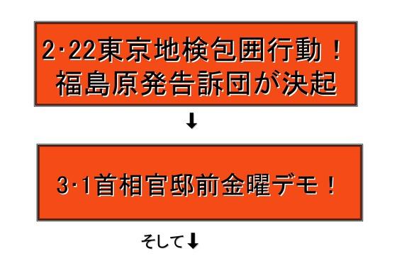 フクシマ2年の全国デモ (1)_02