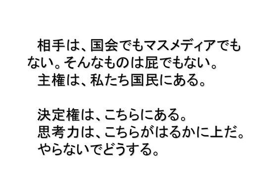 01月02日大集会の呼びかけ_24