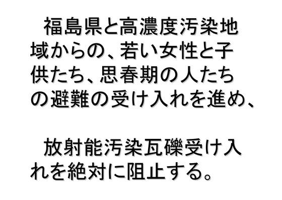 11月11日マンモスデモの呼びかけ_12