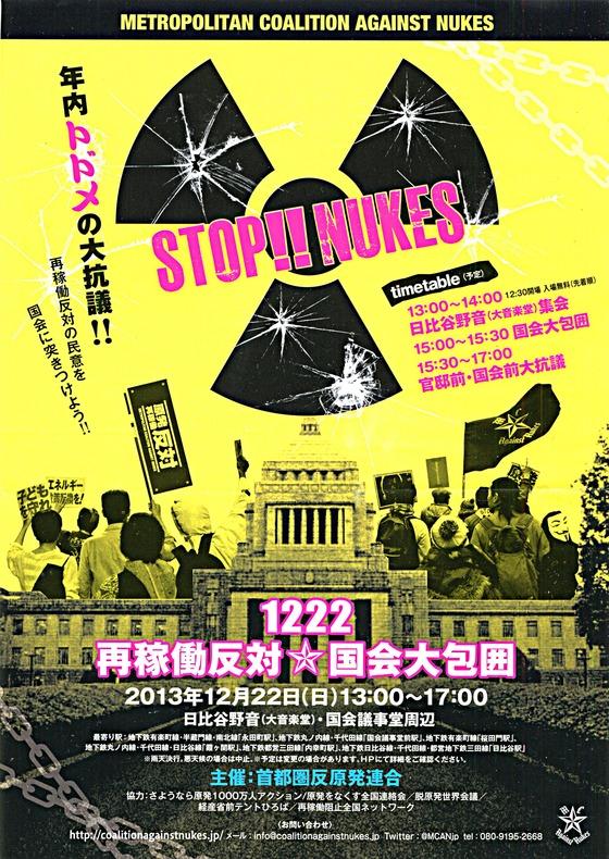 2013年12月22日国会包囲デモ-1