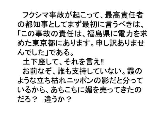 総選挙第4弾・維新の会編_04