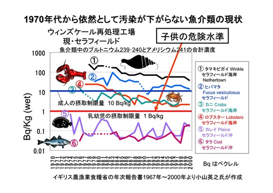 PDF◆太郎DVDー5放射能の危険性-05_01
