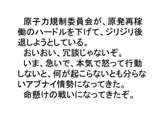 1月23日連続大集会の呼びかけ_02