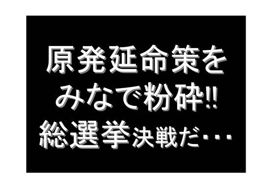 総選挙第5弾・諸政党編_33