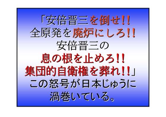 23代々木公園大集会9