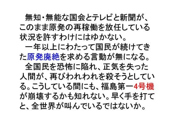 11月11日マンモスデモの呼びかけ-2_08