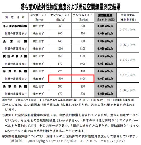 軽井沢落ち葉.png