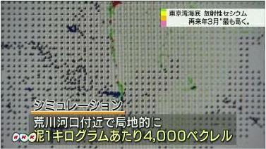 東京湾 再来年4000ベクレルに