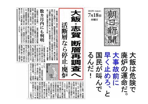 7月29日国会包囲巨大デモの呼びかけと決算報告_11