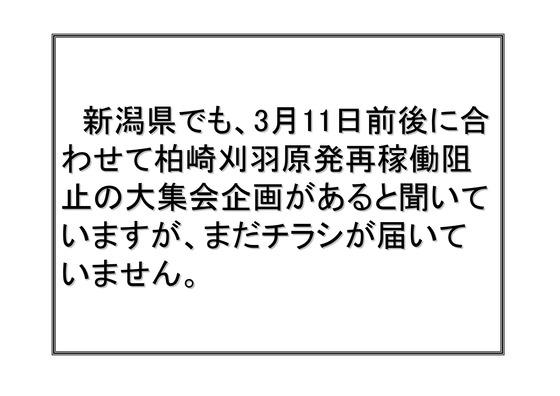 フクシマ2年の全国デモ (1)_26