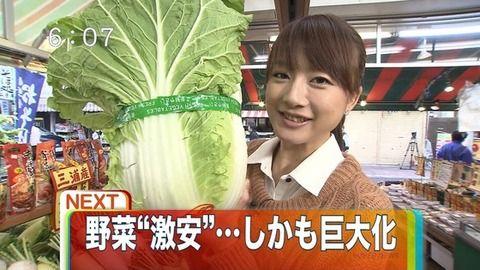 関東の野菜が急激に巨大化してるらしい.jpg