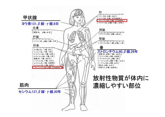 PDF◆太郎DVDー5放射能の危険性-03_03