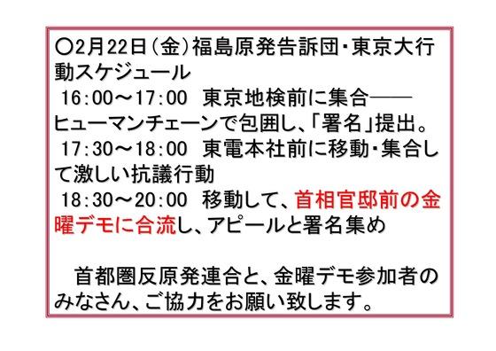 フクシマ2年の全国デモ (1)_03