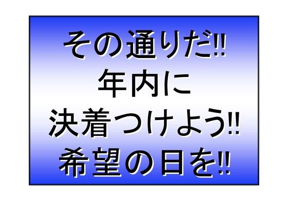 11月11日マンモスデモの呼びかけ_21