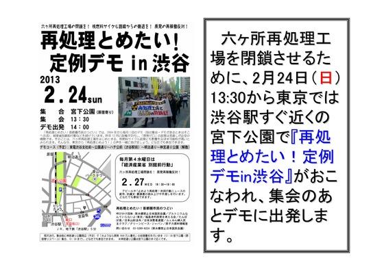 フクシマ2年の全国デモ (1)_20