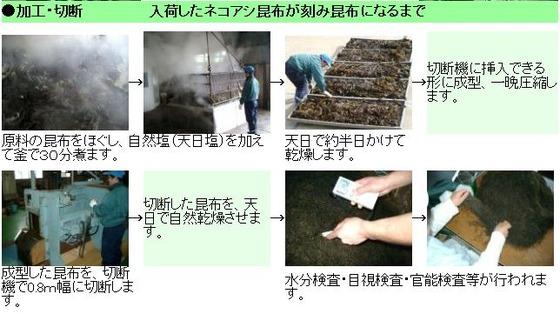 刻み昆布 製造工程