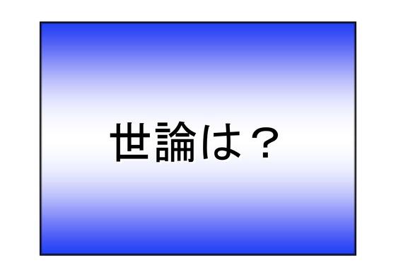 総選挙第5弾・諸政党編_09