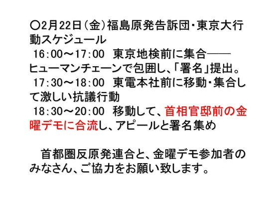 01月09日福島原発告訴団からのお知らせ_13