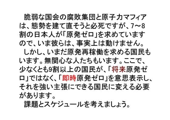 01月02日大集会の呼びかけ_04
