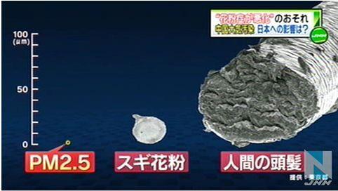"""中国大気汚染、日本で""""花粉症悪化""""も8"""