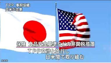 TPP 日米事前協議で合意2