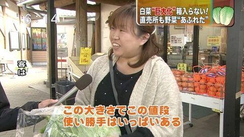 関東の野菜が急激に巨大化してるらしい5.jpg