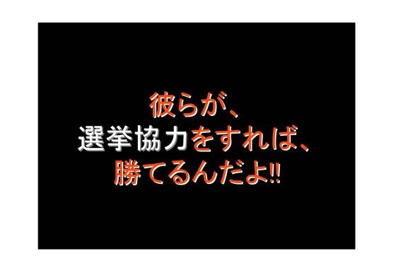 総選挙第5弾・諸政党編_22