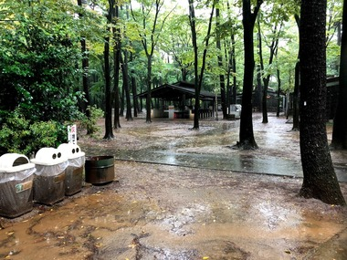 雨の清水公園キャンプ場