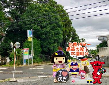 台風15号通過の後な野田市