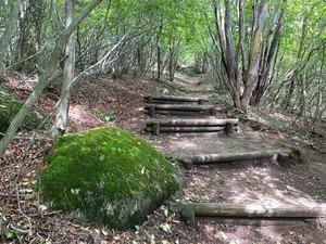 そして登山道