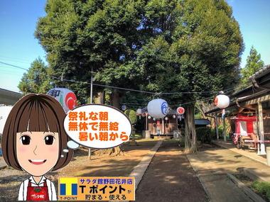 野田市の祭