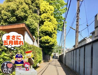 五月晴れの野田市20170215