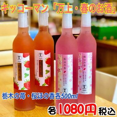野田市ゆかりの春のお酒